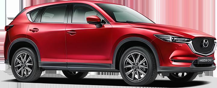Daugaard Biler - Mazda, Opel, Seat, Ford, Citroen, Suzuki og Toyota